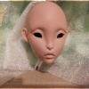 [Arrival] Lillycat Cerisedolls Lyse Head - 10